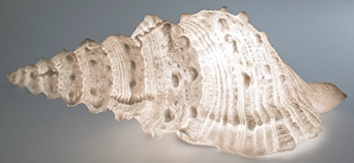 Formano Jardin Lampe Décorative Lampe de jardin Éclairage Coquillage, résistant aux intempéries, 66 x 25 cm