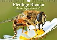 Fleissige Bienen. Von der Bluete bis zum Honig (Wandkalender 2021 DIN A4 quer): Emsige Arbeiterinnen und Produzentinnnen von wertvollem Honig (Geburtstagskalender, 14 Seiten )