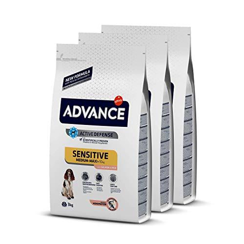 ADVANCE Sensitive Medium-Maxi - Pienso para Perros de Razas Medianas y Grandes con Sensibilidades Digestivas con Salmón y Arroz - Pack de 3 x 3kg - Total 9Kg 🔥