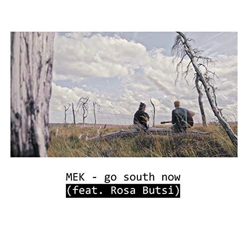 go south now (feat. Rosa Butsi)