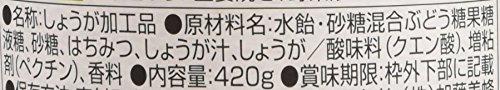 加藤美蜂園本舗はちみつ&しょうが420g