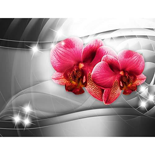 Fototapete Blumen Orchidee 3d 352 x 250 cm Vlies Tapeten Wandtapete XXL Moderne Wanddeko Wohnzimmer Schlafzimmer Büro Flur Schwarz Rot 9321011c