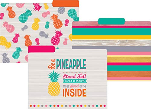 Teacher Created Resources Tropical Punch File Folders (TCR8538)