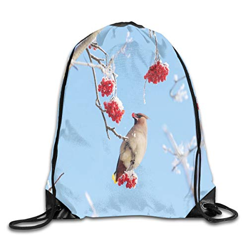 Drawstring Backpack Sports Gym Bag for Women Men, D4406 Waxwing Eating Frozen Rowan Berries Clear Blue Sky View Cold Winter Weather