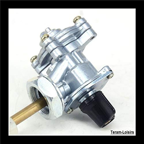 Teram Loisiss - Grifo de gasolina para Honda 250 600 919 900 CBR CB 1300 CBR VTR Hornet CB500