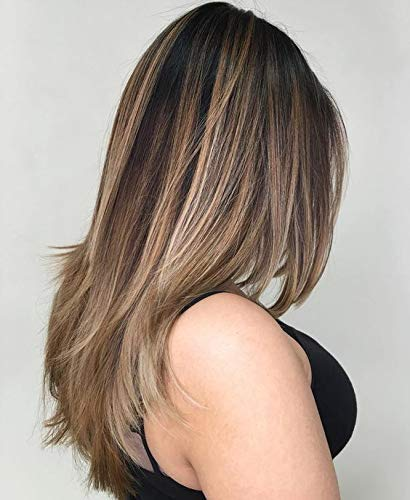 LaaVoo 22 Pouces Perruque Naturelle de Cheveux Humains Droit Glueless Unprocessed Wigs Balayage Natural Black to Light Brown and Dark Honey 130% Density (#1b/8/16, Free Part)