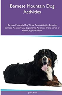 Bernese Mountain Dog Activities Bernese Mountain Dog Tricks, Games & Agility. Includes: Bernese Mountain Dog Beginner to A...