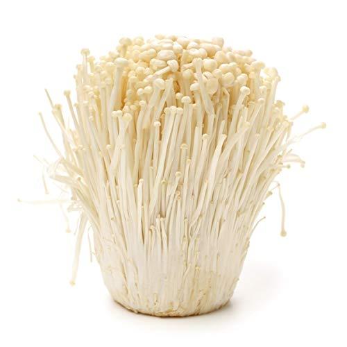 100 Grams of Enoki Mushroom Spawn Mycelium to Grow Gourmet and Medicinal Mushrooms at Home...
