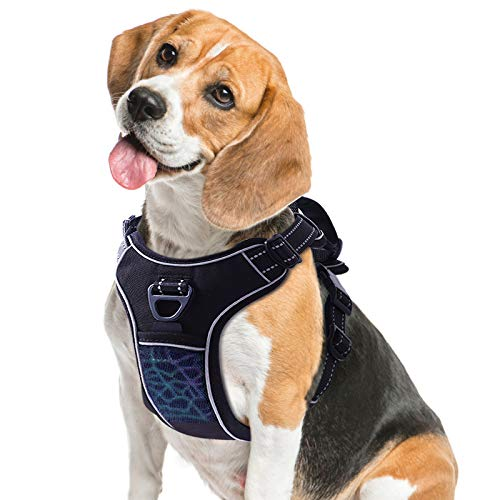 TAMOWA Dog Harness No Pull, Pet Harness with 2 Leash Clips, Adjustable Soft Padded Dog Vest and Reflective Breathable Oxford Soft Vest Easy Control Front Clip for Small Medium Large Dogs, Black, L