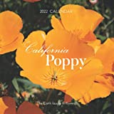 California Poppy 2022 Calendar: Mini Calendar 2022 with Large Grid for Note - To do list, Gorgeous 7x7'' Small Calendar, Non-Glossy Paper