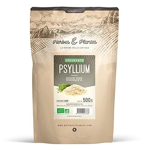 Herbes Et Plantes Psyllium Blond Bio 99 % Pur Téguments 500 g