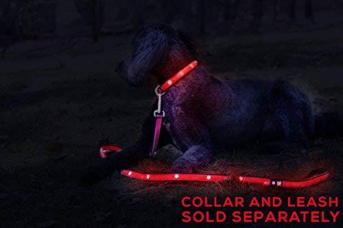 Tuff Tails LED Lightning Dog Leash