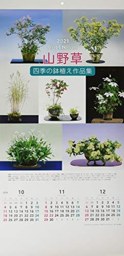 山野草四季の鉢植え作品集カレンダー ([カレンダー])