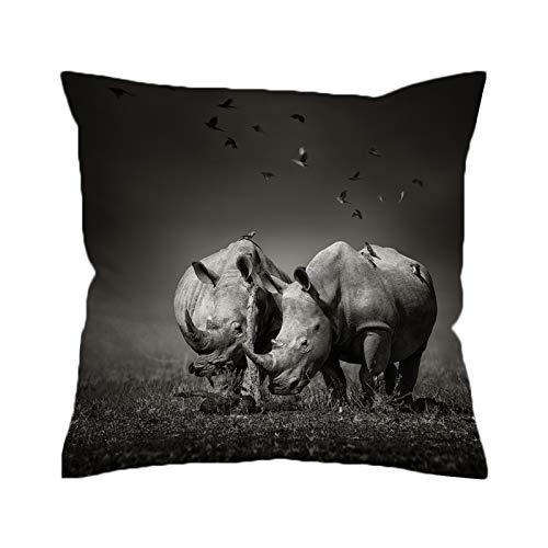 KORANGE Fundas para Cojines con Cremallera Oculta Microfibra (Color : Rhinoceros, Size : 28'x28'(70cmx70cm))