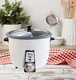 Voll Automatischer Reiskocher mit Reiskuchen Reiskruste Tahdig Herstellungsfunktion (3-4 Personen, Grau) -