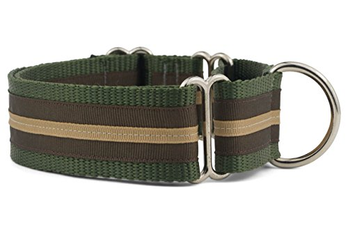 "If It Barks - 1.5"" Martingale Collar for Dogs - Stripe Design - Adjustable - Strong and Comfy Nylon - Ideal for Training - Made in USA - Medium, Hiker"