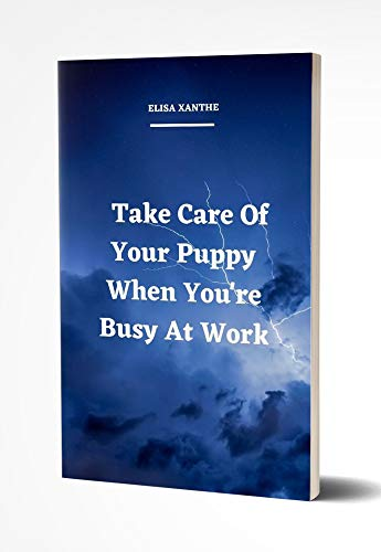 Take Care Of Your Puppy When You're Busy At Work (English Edition)