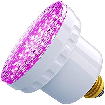 Top 10 Best hot tub light bulb Reviews