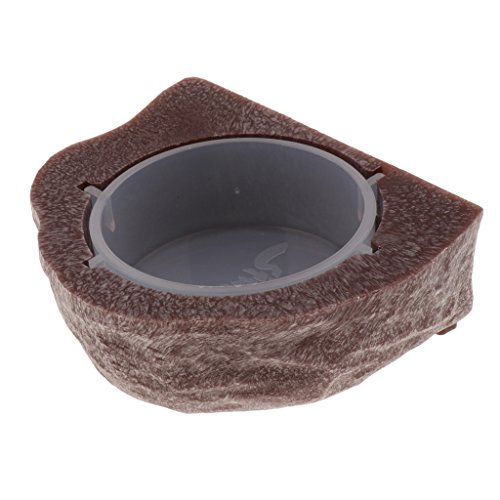 PETSOLA Mini Magnetic Feeding Ledge Feeder Für Gecko Diät, Lebensmittel Oder - Braun