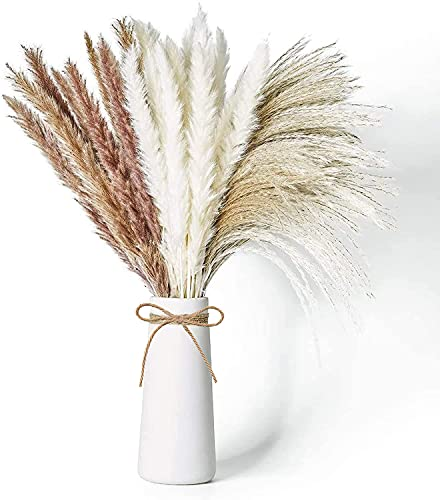 60Pcs Pampas Secas 50cm Grass Flores Secas para la Decoraciones de Hierba...