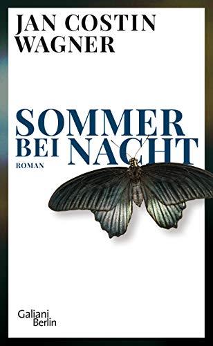 Sommer bei Nacht: Roman