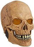 Rubie's Costume Deluxe Overhead Skull Mask,Tan, One Size