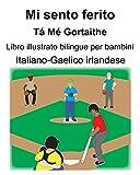 Italiano-Gaelico irlandese Mi sento ferito/Tá Mé Gortaithe Libro illustrato bilingue per bambini