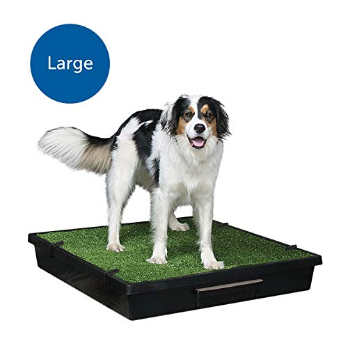 PetSafe Pet Loo Portable Dog Potty, Alternative to Puppy Pads, Large