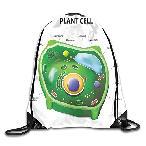Fuliya Print Drawstring Backpack,Plant Cell Biology Research Botany Anatomy Structure Organic Life Nature,Beach Bag for Gym Shopping Sport Yoga