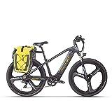 RICH BIT Bicicleta eléctrica pedelec de Bicicleta de montaña eléctrica de 29 Pulgadas con batería de Litio de 48 V 10 Ah, Motor Trasero de 500 W, Bicicleta eléctrica para Mujeres y Hombres (Oro)