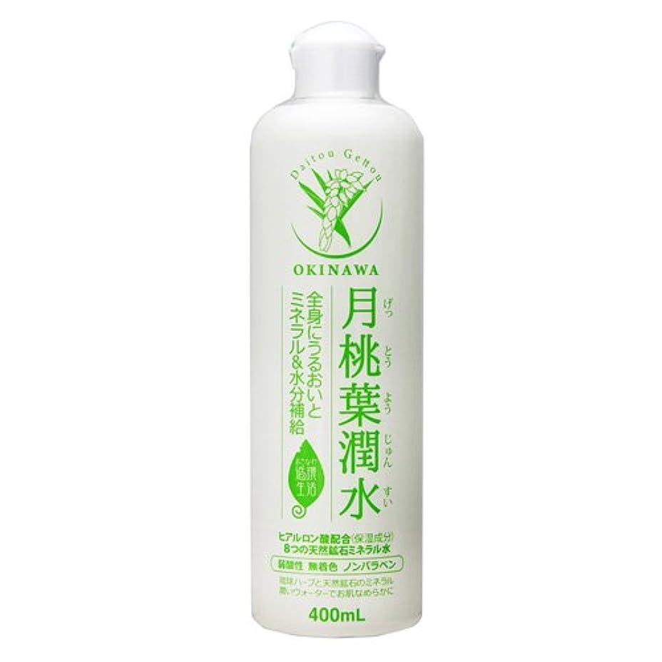 窒息させるメキシコプロテスタント月桃葉潤水