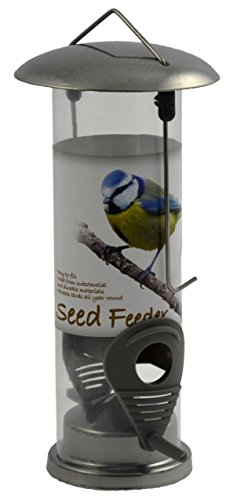 Green Jem Chrom Seed Wilde Futterhaus, Silber, 13x 10x 20,5cm