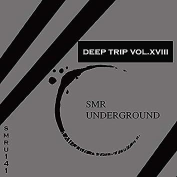Deep Trip Vol.XVIII