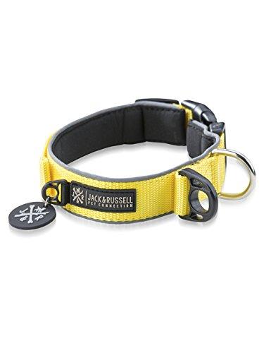 Jack & Russell Premium Hundehalsband Luna reflektierend und Neopren gepolstert Hunde Halsband div. Größen und Farben (Halsumfang S (28-35 cm), Gelb)