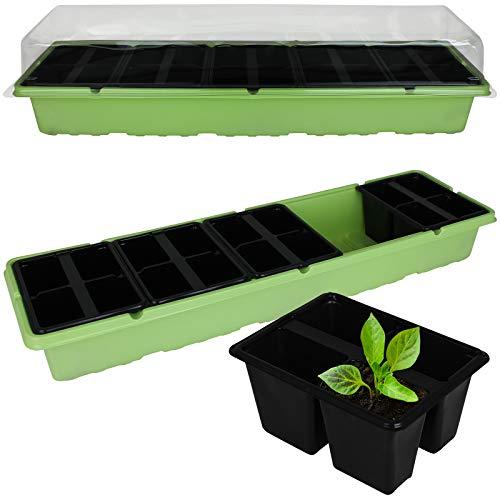 Kinzo Pflanzkasten mit 20 Töpfen Anzuchtschale klein 2er Set Zimmergewächshaus Anzucht Pflanzen Kräuter Treibhaus