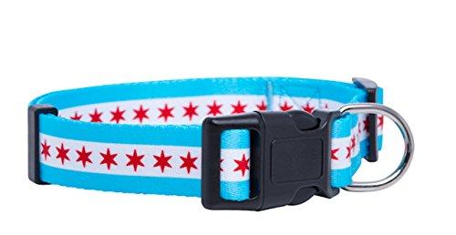 Native Pup Chicago Flag Dog Collar (Large)