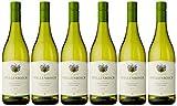 Grand Vin de Stellenbosch Chardonnay Viognier White Wine (