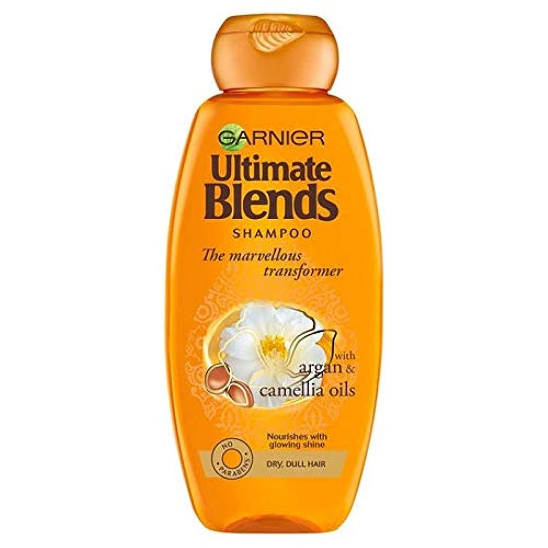 汚れた米ドル盗難[Garnier ] ガルニエ究極は、アルガンオイルつやのある髪シャンプー360ミリリットルをブレンド - Garnier Ultimate Blends Argan Oil Shiny Hair Shampoo 360ml [並行輸入品]