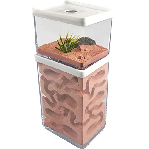 MOCOHANA Ant Farm Box Ant Home for Kids Study of Ant Behavior Ant Nest Farm Educational Formicarium for Ant