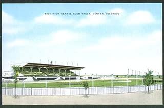 Mile High Kennel Club Track Denver CO postcard 1940s