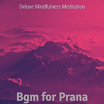 Bgm for Prana