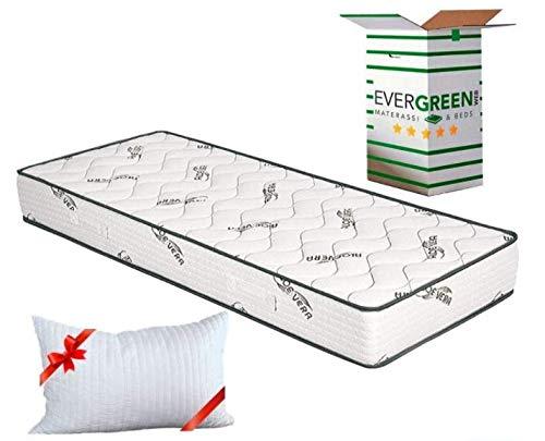 Evergreenweb ✅ Orthopädische Matratze 80x190 Höhe 20 cm + Visco Kissen GRATIS Kaltschaummatratze mit Aloe Vera Massageeffekt Atmungsaktiv Milbendicht Bezug für Lattenrost oder Bett