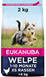 Eukanuba Welpenfutter mit frischem Huhn für mini Rassen, Premium Trockenfutter für Junior Hunde, 2kg