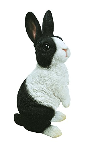 Vivid Arts XRL-PR04-C Dutch Rabbit on Lookout Resin Ornament