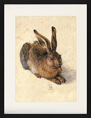 1art1 Albrecht Dürer - Junger Feldhase, 1502 Gerahmtes Bild Mit Edlem Passepartout | Wand-Bilder | Kunstdruck Poster Im Bilderrahmen 80 x 60 cm