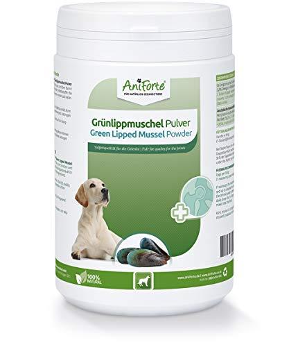 AniForte poudre de moule à lèvres vertes pour chiens 500g - Poudre naturelle de moule à lèvres vertes en qualité grasse, glycosaminoglycanes 3,3%, soutient les fonctions articulaires