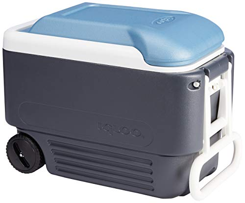 Igloo Quart MaxCold Cooler, Blue/Navy, 40 Qt