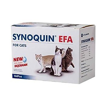 VetPlus Synoquin EFA Complément nutritionnel pour la santé articulaire des Chats 90 gélules