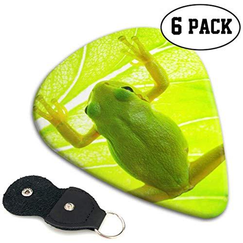 Green Tree Frog On The Leaf Close Up Púas de guitarra para...