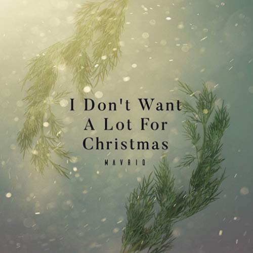 I Don't Want A Lot For Christmas